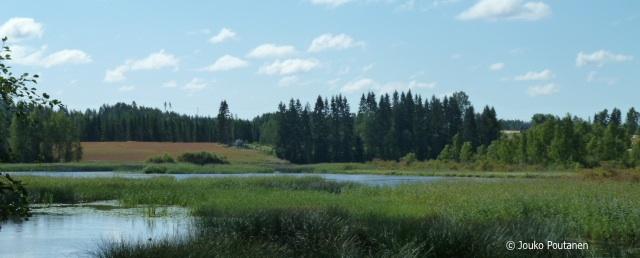 Rautjärvi Kokkolanjoki alajuoksu
