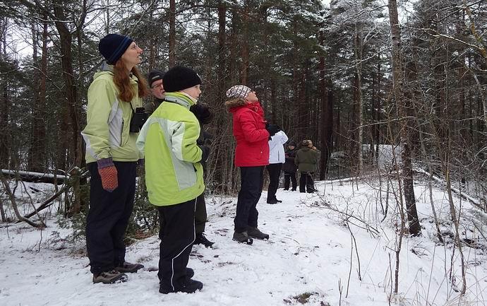 Pappilanniemessä pihabongataan © Juha Juuti